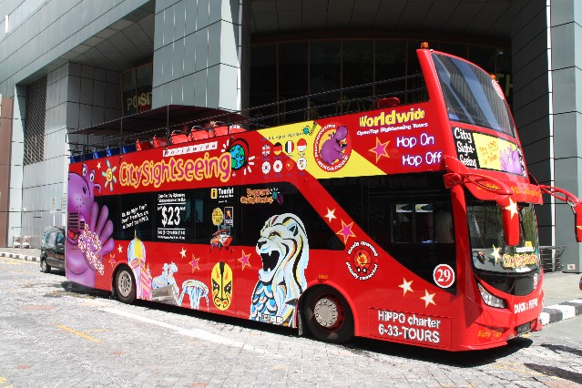 Hippo City Sightseeing Tour